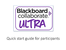 Student Collaborate Ultra.pdf